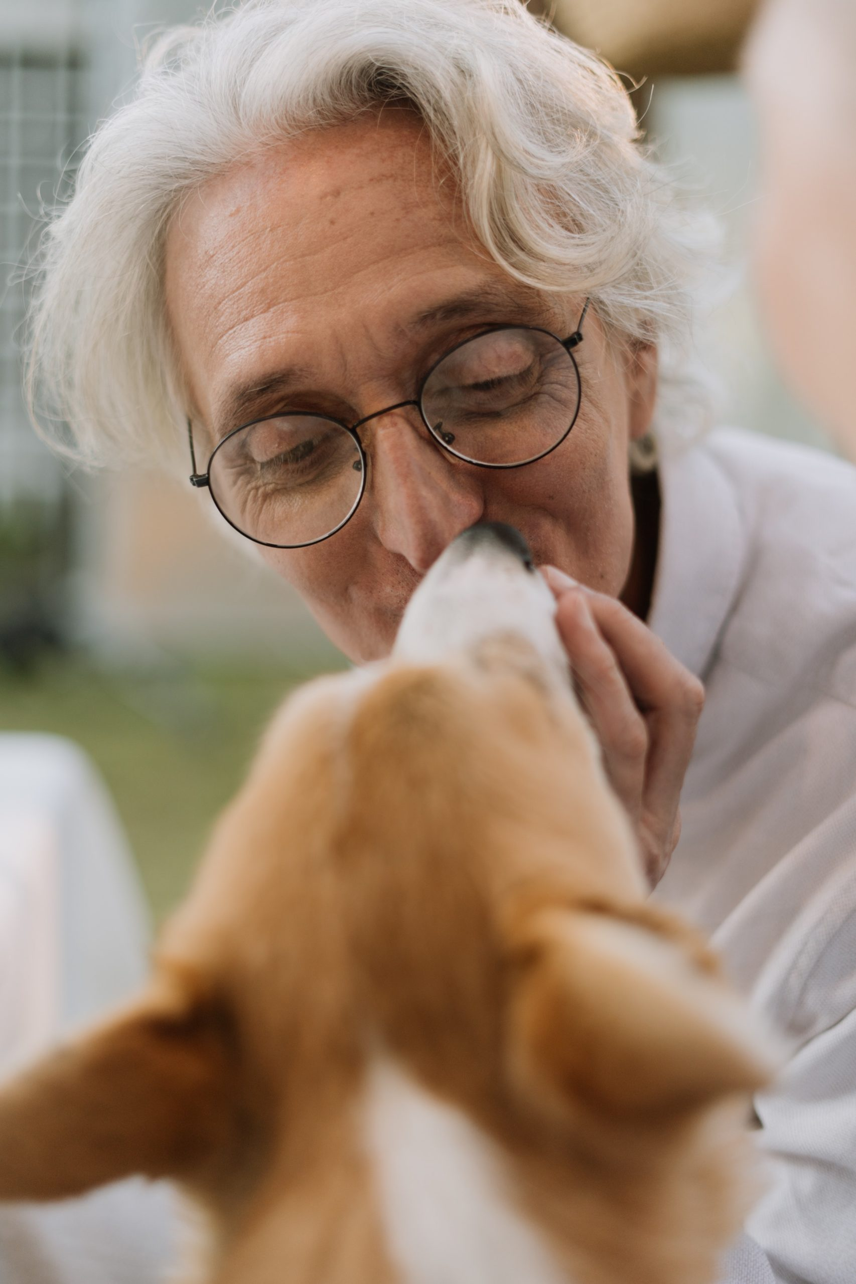 The Pros, Cons & Possibilities of Pet Ownership for Aging Adults